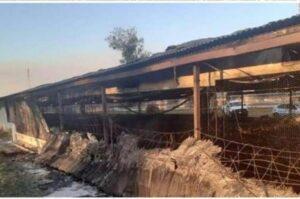 Miles de pollos murieron tras un incendio en Córdoba