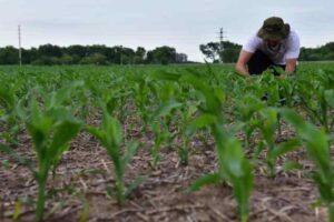 Pequeños y medianos productores lanzaron la Mesa Agroalimentaria